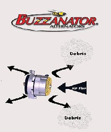 buzzs.JPG