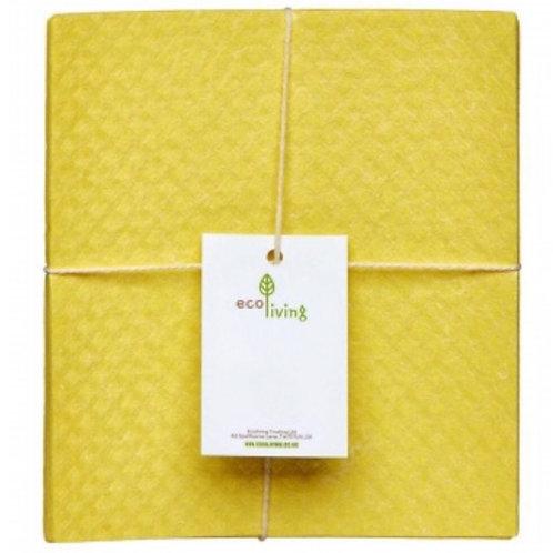 Compostable Sponge Cloth