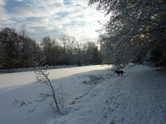 Our property in winter time