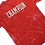 Thumbnail: Hand-Dyed Champion Tee - XLT