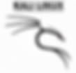 kali_linux_logo_negro--i_141385584347141
