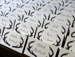 Antler Place Cards