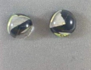 Black and Gold Dichro Earrings