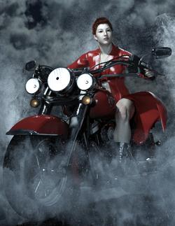 Wild Rose-Bike02