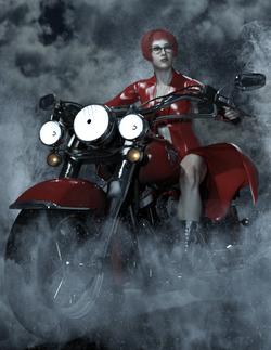 Wild Rose-Bike01