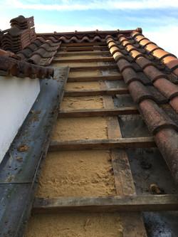 Gecko-isol | isolation en rampant