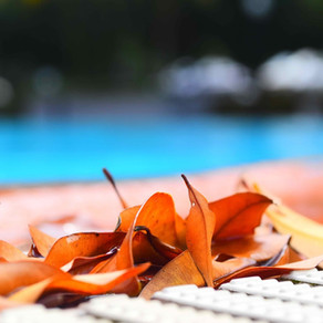 4 Quick Tips for Fall Pool Maintenance