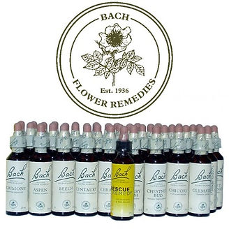 Bach-Flower-Remedies_edited.jpg