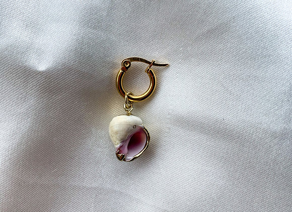 Creolen hoops Sea shell