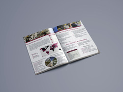 brochure clement petit