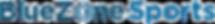 bluezone_logo_retina-04.png