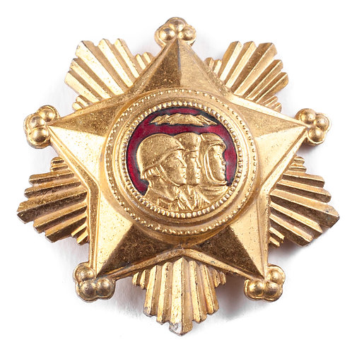 Order of Military Service Honor, 1st Class.