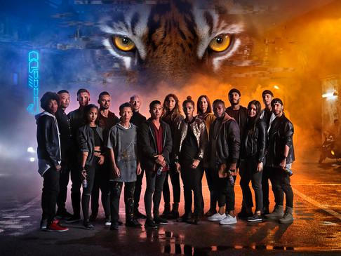 Tiger Group.jpg