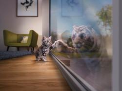 MPE0091_Plates_Livingroom_FR