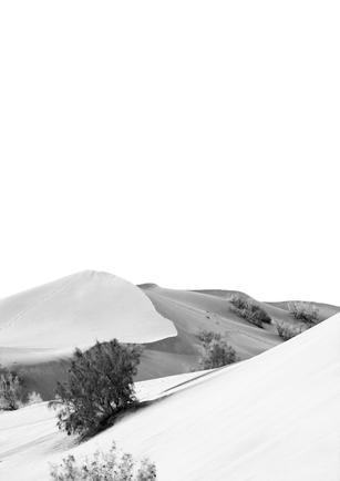 Iranian Desert II
