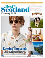 The herald front cover.png