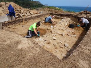campaña excavación vicedo 2020