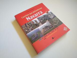 """ilustraciones libro """"castillos que defendieron navarra"""""""
