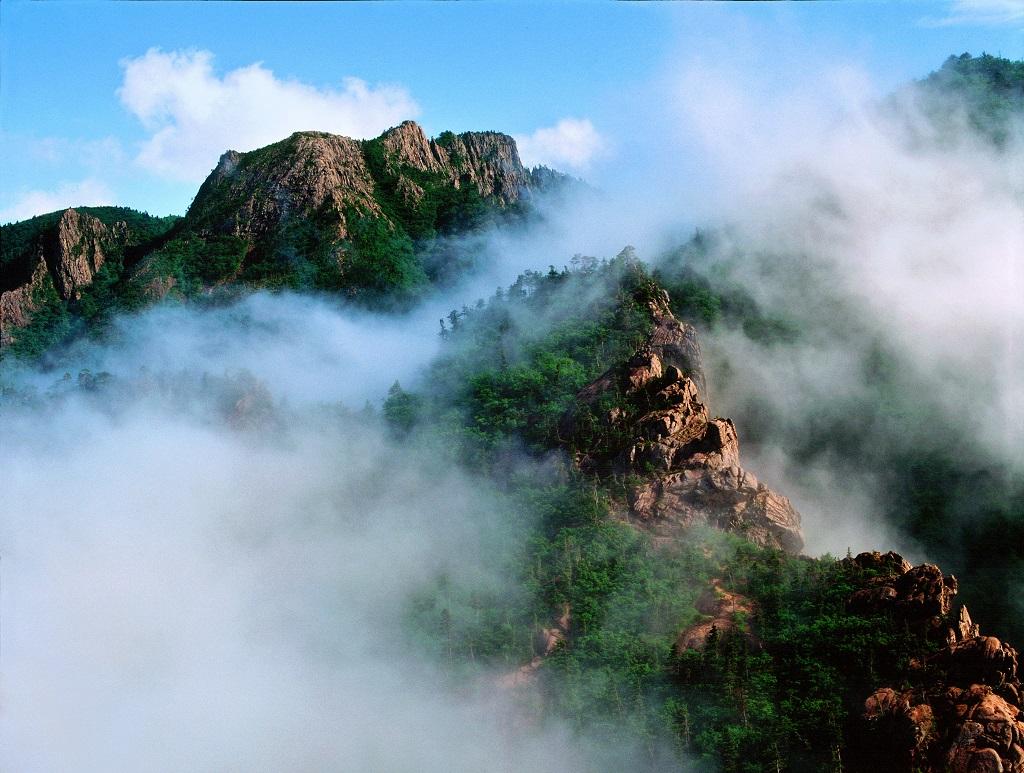 운해덮인산