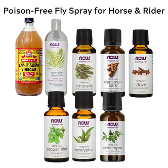 Poison-Free Fly Spray Kit