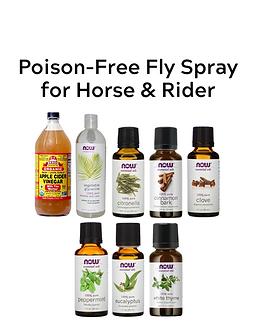 Poison-Free Fly Spray Kit