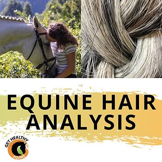 Equine Hair Analysis