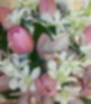 DSCN9021-2_edited.jpg