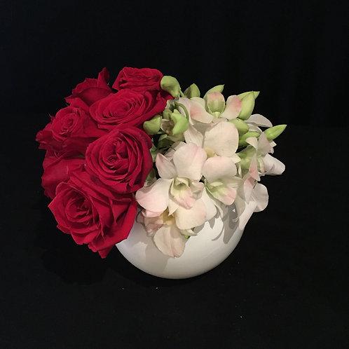 LOFTY White & Red