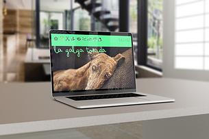 web_desktop.png
