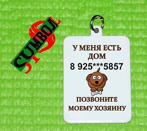 адресник для собак