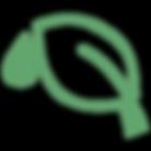ICONA - Green Secrets-01.png