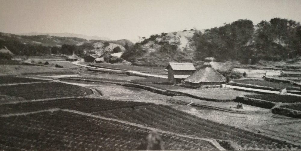 Habitations et rizières aux environs de Yokohama 横浜 sous l'ère Meiji  明治時代 (1868 - 1912) (Photo Cl. Underwood)