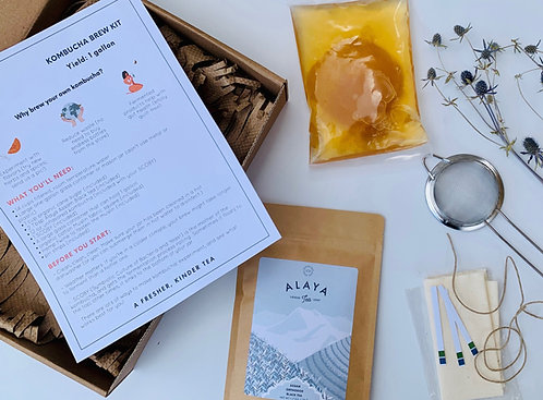 THE KOMBUCHA KIT