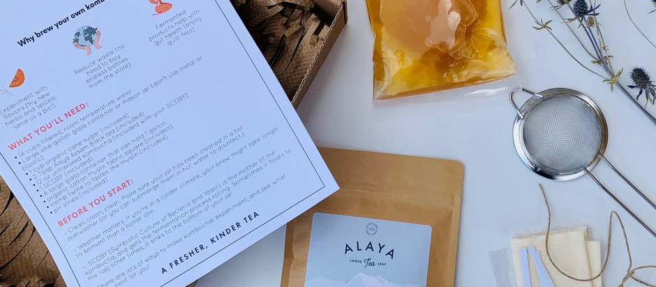 Introducing: The Alaya Loose Leaf Kombucha Kit