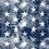 Thumbnail: Navy Vintage Stars Bandana