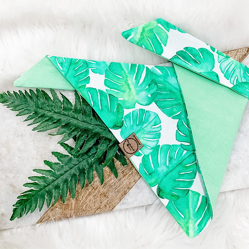 Matching Monstera (Green)