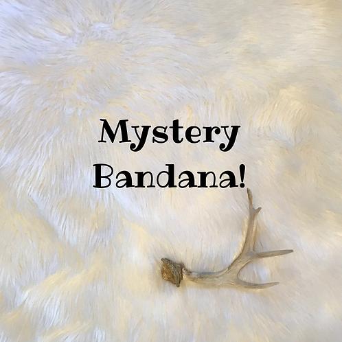 Mystery Bandana