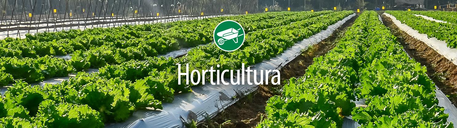 Horticultura kbw