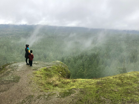 Little Mountain Lookout (Parksville)