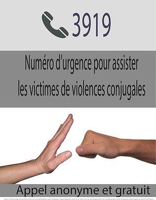3919.jpg