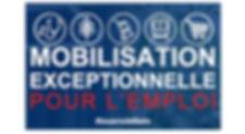site mobilisation emploi.jpg