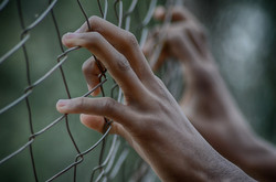 fence-2163951_1920
