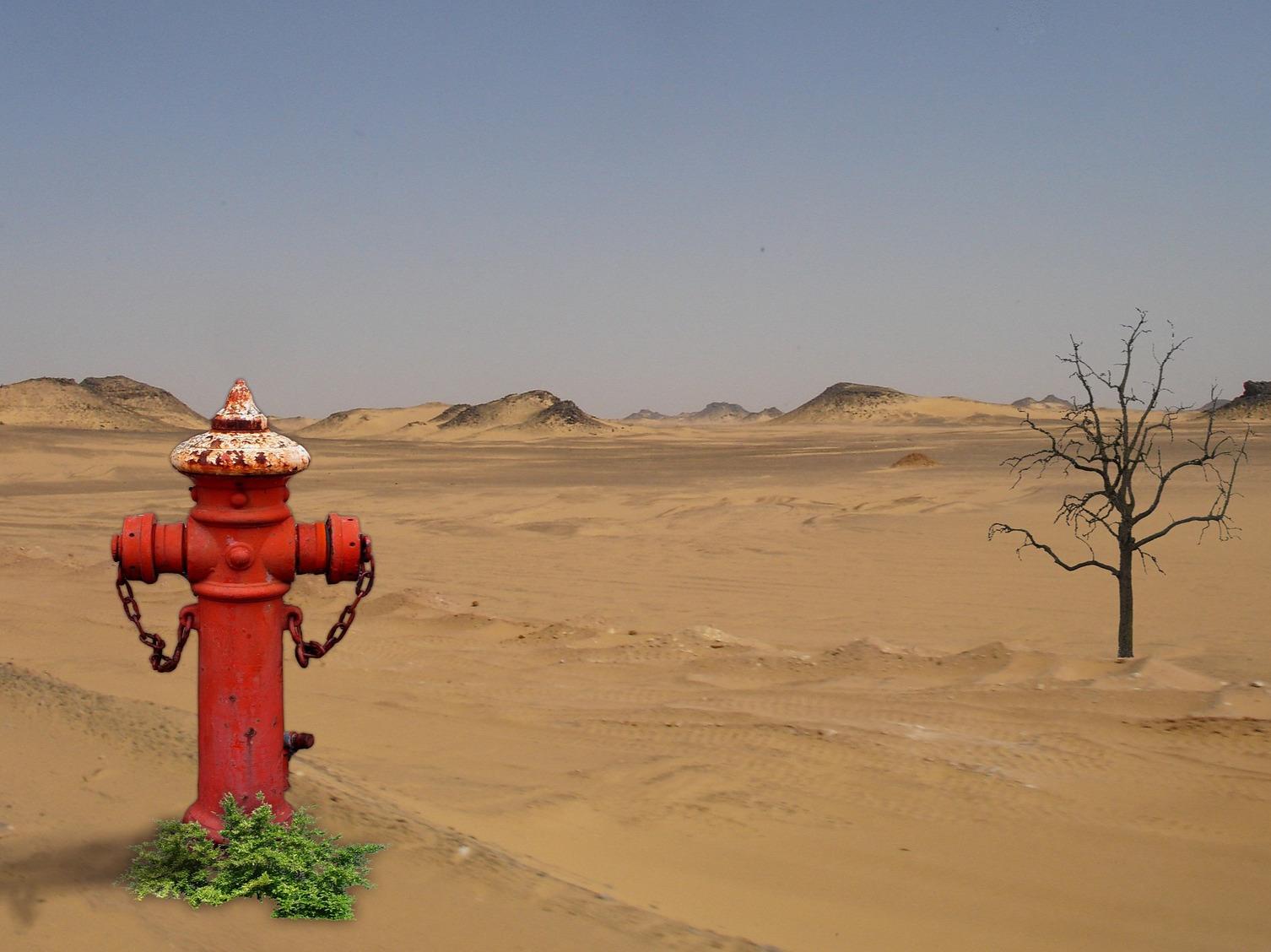 desert-897589_1920_edited