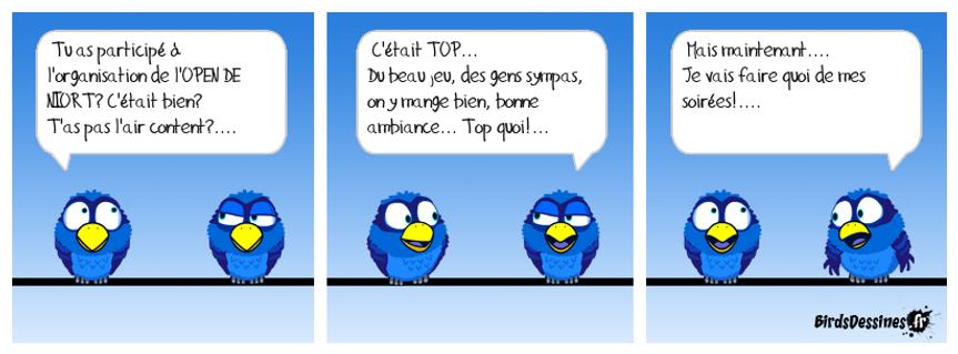 BD BIRDS.png