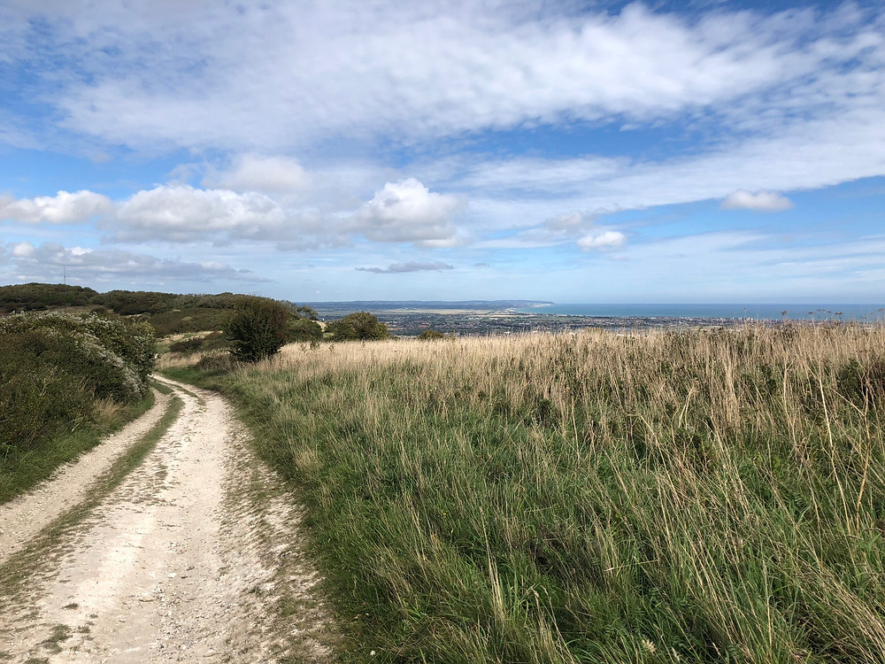 The South Downs Way, near Jevington, East Sussex