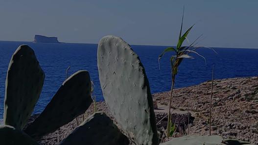 Ghar Lapsi & Blue Grotto
