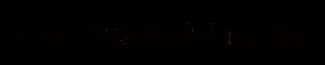 chickswithbrands logo.png