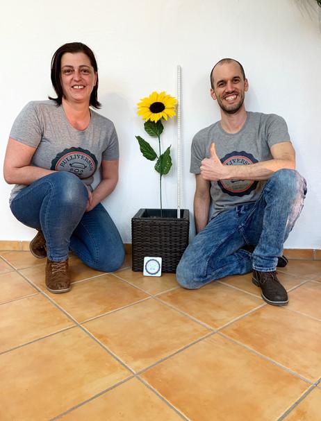 Sonnenblume Bianca und Reto