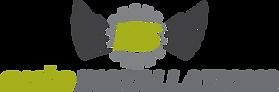 ES Auto Installations Logo-1.png