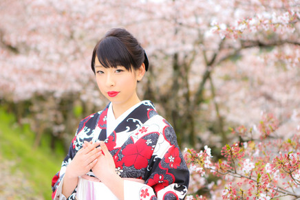 ロケーションパッケージ 桜